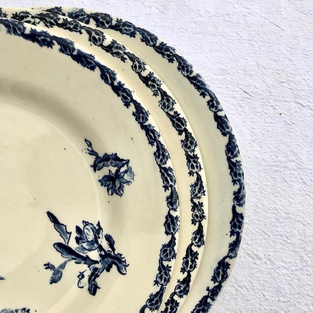 Assiettes Cactus de Gien