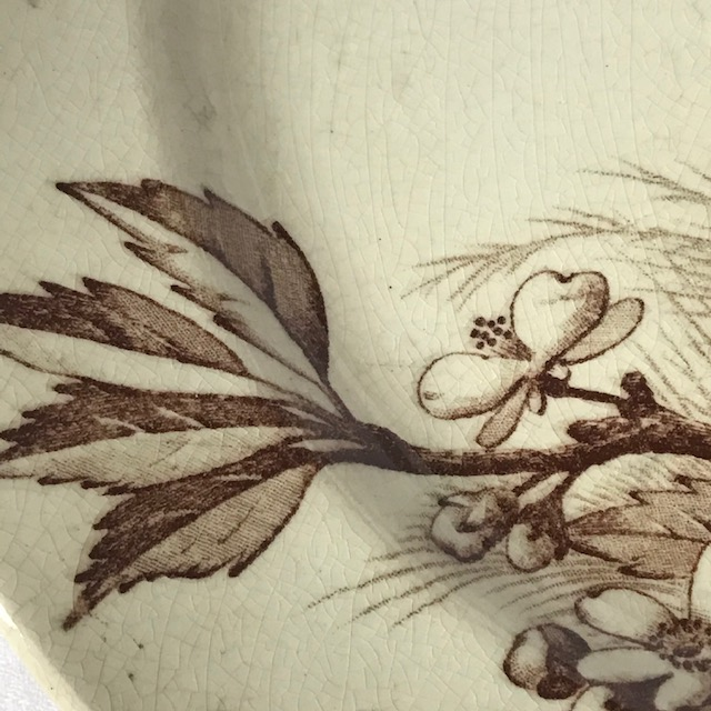 Assiette plate Jules Vieillard Série Oiseaux
