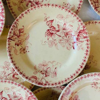 Assiettes plates SFNGR Bordeaux