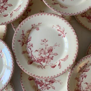 Assiettes plates Fleurs Normandes