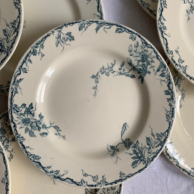 Assiettes plates Passiflore