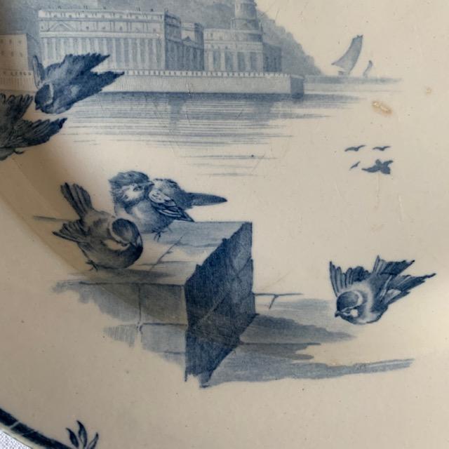 Plat Rond Vol d'Oiseaux