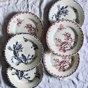 Six assiettes plates Gien
