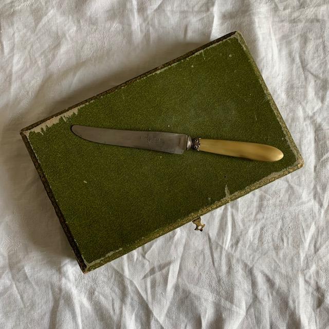 12 couteaux en corne